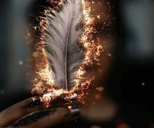 fire, feather, and art image