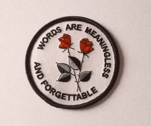 rose, quotes, and words image