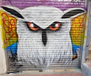 art, colors, and owl image