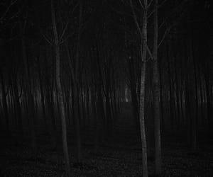beauty, blackandwhite, and Darkness image