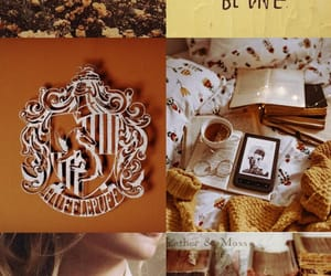 aesthetic, hufflepuff, and harrypotter image