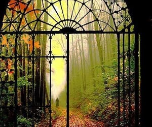 autumn, inspiracion, and otoño image