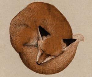 ch, fantasy, and fox image