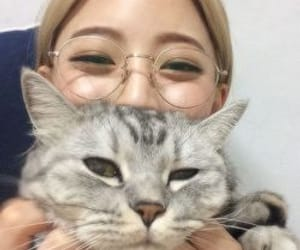 ulzzang, girl, and cat image