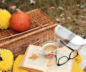 aesthetic, autum, and book image