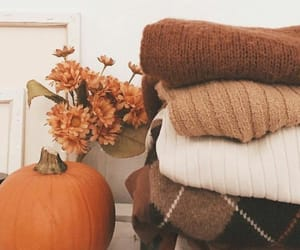 autumn, pumpkin, and sweater image