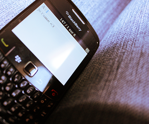 blackberry and love image