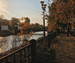autumn, bucharest, and fall image