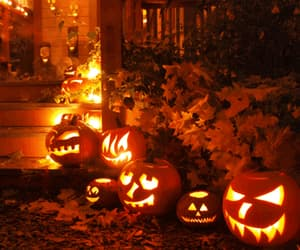 decoration, fall, and gif image