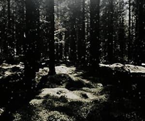 gif, vikingos, and vikings image