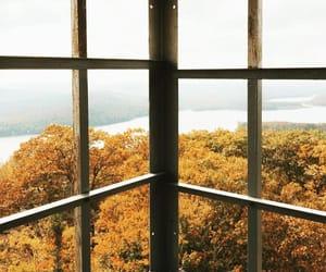 autumn, background, and beautiful image