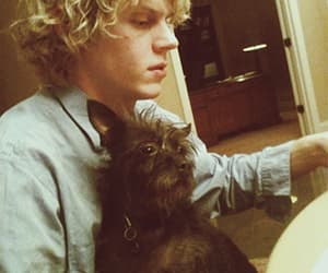 handsome, evan peters, and ahs murder house image