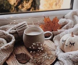 aesthetic, fall, and autumn image