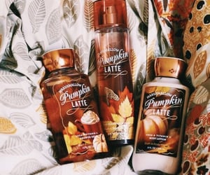 autumn, fall, and aesthetic image