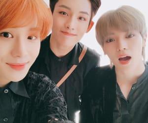winwin, jungwoo, and taeyong image