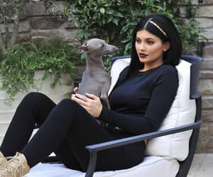 kylie jenner and dog image