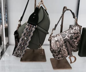 bag, dior, and style image