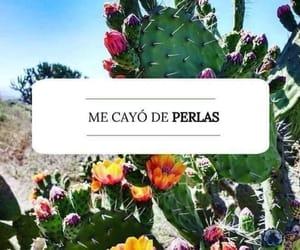 dichos and méxico image