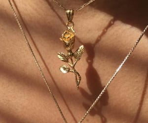 beauty, necklace, and rose image