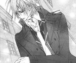 anime, manga, and vampire knight image