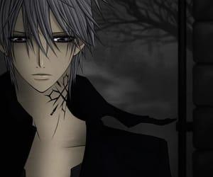 vampire knight, anime, and zero image