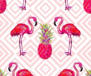 flamingos, vector art, and wallpaper image