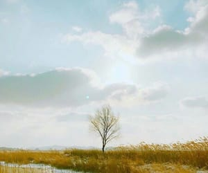 aesthetic, spring day, and bts image