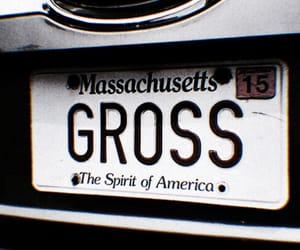 theme, gross, and pale image