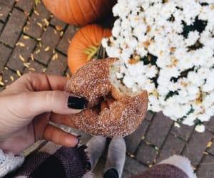 cider donuts + blanket scarfs