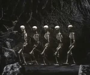 dance, skeletons, and gif image