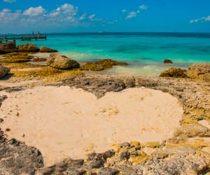 amazing, cancun, and vacation image