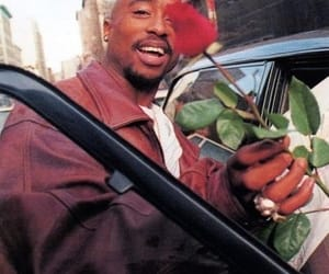 tupac, 2pac, and rose image