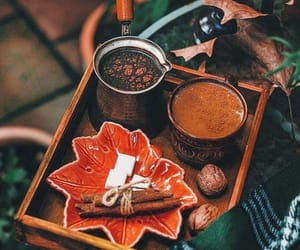 autumn, Lazy, and coffee image