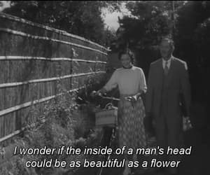 1954, poetry, and beauty image