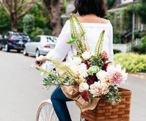 flowers and bike image