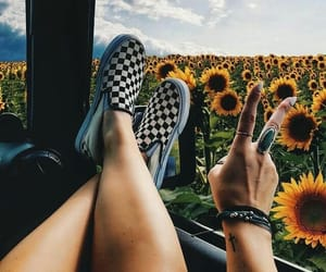 flowers, sunflower, and shoes image