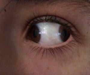 brown eye, eye, and grunge image