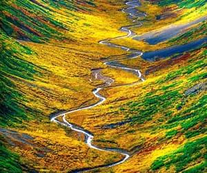 alaska, fall, and autumn image