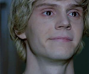 gif, american horror story, and tate langdon image