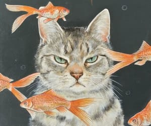 cat, fish, and wallpaper image
