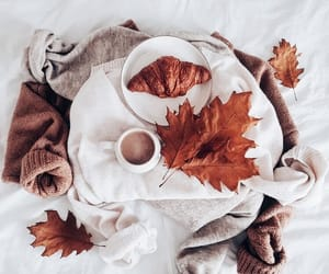 autumn, aesthetic, and fall image