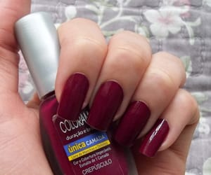 burgundy, manicure, and nail polish image