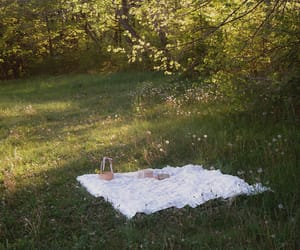 nature, picnic, and green image