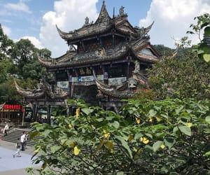 Chengdu, china, and nature image