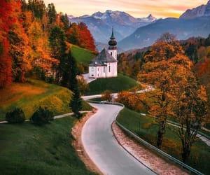 autumn, foliage, and serene image
