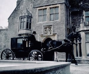 carriage and horse image