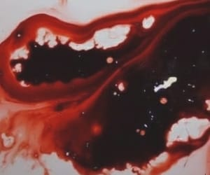 blood, red, and gore image