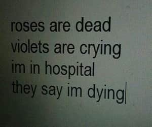 hospital, sad, and quotes image