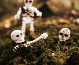 Halloween, skeleton, and toys image