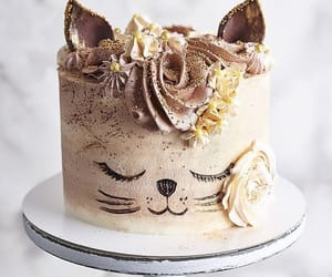 cake and cat image